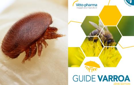 Guide Varroa